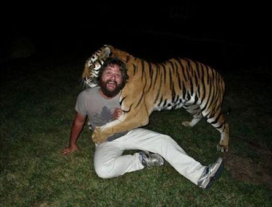 Hangover Tiger 2